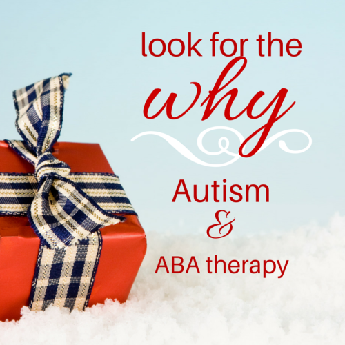 look for the %22why%22 - Autism & ABA therapy